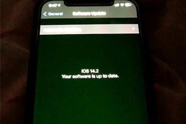 苹果承认iPhone12存在绿屏问题:正在进行相关调查