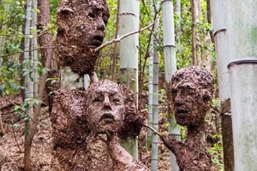 太惊悚!日本竹林惊现诡异人脸 是灵异现象还是?
