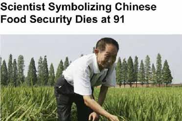 外媒集体为袁隆平刷屏:他的水稻研究,养活了全世界!
