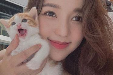 """想变成小猫咪踩奶!韩国网红""""감동란""""美照欣赏"""