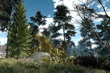 《辐射4》森林MOD发布:为游戏增加了约18000棵树!
