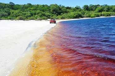 肥宅快乐水?巴西可口可乐湖:泡久了还对人体有益?!