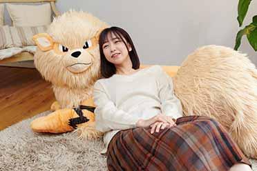 谁不喜欢大狗狗?《宝可梦》1/2风速狗毛绒玩偶发布