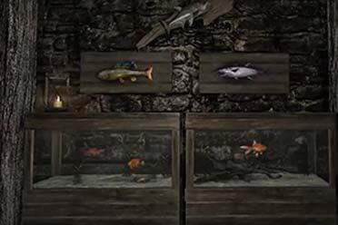可以养鱼啦!《老滚5:周年纪念版》将新增 水族馆!