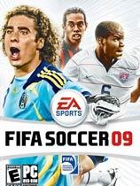 《FIFA世界足球 2009》簡體中文綠色硬盤版
