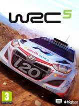 世界汽车拉力锦标赛5