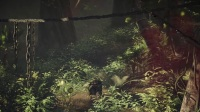 《幽灵行动:荒野》丛林风暴PVP模式更新预告