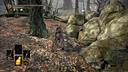 【黑暗之魂3】黑桐谷歌视频攻略 05 磔罚森林