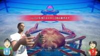 【游侠网】魔性格斗游戏《螃蟹大战》最新实机宣传片