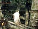 CGL【紫雨carol】《黑暗之魂2:原罪学者》流程解说视频【七:巨人之森隐藏点补遗】