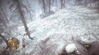 【混沌王】《孤岛惊魂:原始杀戮》PC版专家难度最高画质实况解说(第九期 骑象骑熊骑老虎)