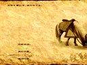 骑马与砍杀【汉匈全面战争】<菜鸟的崛起>第九期:打绿林救官军
