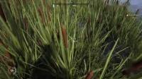 《中世纪王朝》前期稻草获得方法