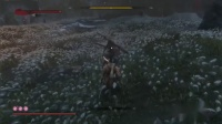 《只狼》纯招架不按攻击键无伤无道具杀最终Boss