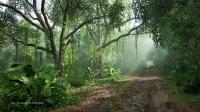 【游侠网】《极限竞速:地平线5》30分钟环境音试听影像