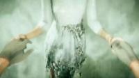 《孤岛惊魂5》刺客信条信仰之跃彩蛋视频