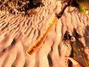 【CGL】《荒岛求生》 贝爷求生日记 专业伐木工人