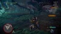 《怪物猎人世界》弓箭单人讨伐尸套龙
