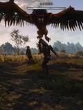 硬汉阿雷巫师3:狂猎流程解说05期捕杀狮鹫