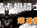 (中文)小艾【蝙蝠侠:阿卡姆骑士】最高难度流程05