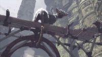 《最后的守护者》E3 VS TGS画质对比