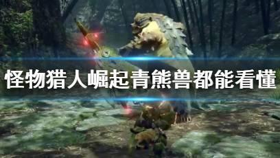 怪物猎人:崛起 青熊兽都能看懂的双剑(双刀)教学—替换技篇