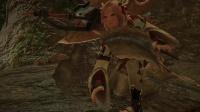 《怪物猎人崛起》神圣独角仙极速采集地点
