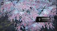 《战争机器5》全神器武器位置攻略