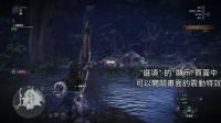 《怪物猎人:世界》建议新手猎人了解的一些设定教学