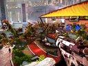 纯黑 PS4《杀戮地带:暗影坠luo》视频攻略解说 最终章 全收集 中文剧情