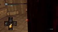《黑暗之魂重制版》混沌刺剑实战视频