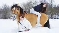 【笑弹计划79】美女骑马千姿百态 摔下马背怪我喽