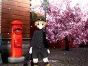 PS3初音未来 歌姬计划F PV欣赏 千本樱