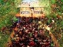 DOTA2 Alliance夺冠与众不同的延时摄影
