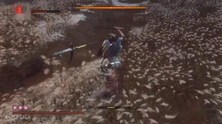 《只狼》最终boss战无伤打法解说