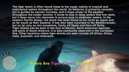 《荒野大镖客2》隐藏彩蛋虎纹鲨鱼