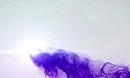 国际资讯:大鱼新手游《千户之屋3:巨蛇烈焰》神秘登录