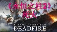《永恒之柱2:死火》全流程攻略视频41放是不放+结尾吐槽