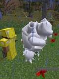 我的世界Minecraft神奇宝贝宠物小精灵35