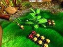 【小枫试玩】植物大战害虫?小枫教你种蘑菇。