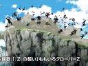 剧场版『龙珠Z 复活的「F」』Z战士篇
