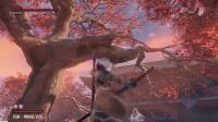 《只狼影逝二度》破戒僧BOSS无伤打法视频