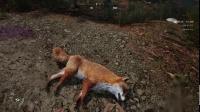 《中世纪王朝》狐狸和野牛位置介绍