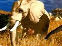 《野生动物园大亨3》预告片 宣传片