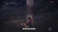 《怪物猎人世界》集中效果对各武器的影响