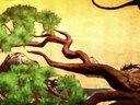 信长之野望14:创造到来!