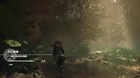 《古墓丽影暗影》库阿克雅库收集攻略22.挑战-摧毁丛林图藤