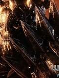 天然卷发《巫师III:狂猎》流程解说第四期