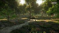虚幻4版《魔兽世界》艾尔文森林更新