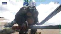 【峻晨解说】独狼生存18-猩猩巨石投篮、野人练枪打靶~欢迎来到方舟竞技娱乐中心!-方舟生存进化